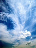 CIRRUS CLOUDS<br />