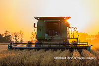 63801-07908 Soybean Harvest at sunset Marion Co. IL