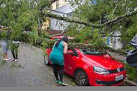 CURITIBA, PR, 05 DE DEZEMBRO 2013 – CLIMA TEMPO/ TEMPESTADE/CURITIBA -  Na tarde dessa quinta-feira(05), uma frente fria chega a capital Paranaense,com ventos atingindo 59km/h. Na rua Desembargador Otavio Amaral, árvore cai em cima de automóvel e bloqueando totalmente a via.(FOTO: PAULO LISBOA  / BRAZIL PHOTO PRESS)