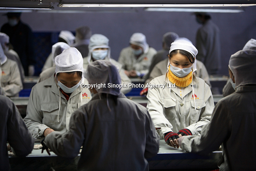 Workers inspect and sort dried Shitaki mushrooms at the Sanyo Food Co. in Sanligang Township, Suizhou City, China.  amount which local credit cooperatives and banks cannot authorize.