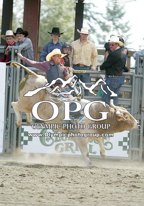 28 August 2005: Zed Lanhan riding the bull Action cat holds on during the Extreme Bulls competition Sunday at the Kitsap County Fair Grounds is slammed into the fence, Lanhan was not able to hold on for 8 seconds to score in the second round on competition in Bremerton, WA..