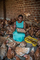 Uganda, Kasangati. Maria Kyisakye uses the BioLite stove at her home, it charges light as well as her mobile phone. She has three children, raises 45 chickens to sell their eggs and hopes to grow her business.