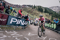 Maglia Rosa Simon Yates (GBR/Mitchelton-Scott) finishing up the infamous Monte Zoncolan (1735m/11%/10km) in 2nd place and putting even more time into his biggest rivals<br /> <br /> stage 14 San Vito al Tagliamento &ndash; Monte Zoncolan (186 km)<br /> 101th Giro d'Italia 2018