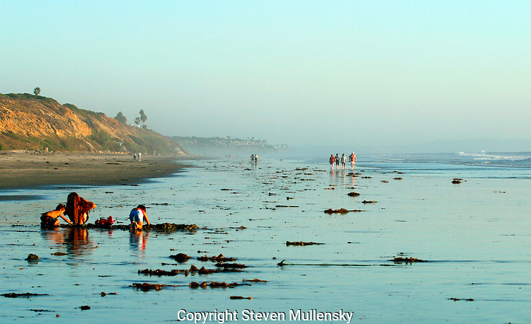 Kids play in the wet sand while a group of adults take a late afternoon stroll along the beach in Carlsbad, California.