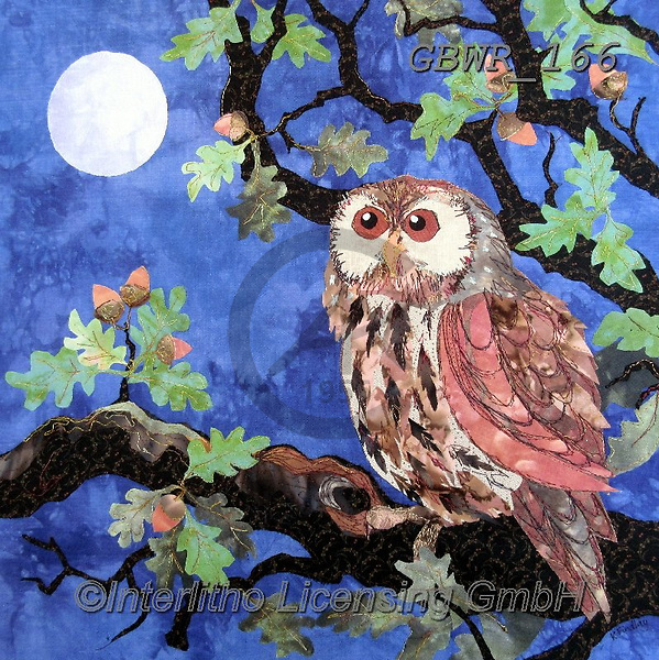 Simon, REALISTIC ANIMALS, REALISTISCHE TIERE, ANIMALES REALISTICOS, innovative, paintings+++++KateFindlay_OakTawny,GBWR166,#a#, EVERYDAY,owl
