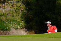 Brett Rankin (AUS) chipping onto the 3rd green during round 2 of the Australian PGA Championship at  RACV Royal Pines Resort, Gold Coast, Queensland, Australia. 20/12/2019.<br /> Picture TJ Caffrey / Golffile.ie<br /> <br /> All photo usage must carry mandatory copyright credit (© Golffile | TJ Caffrey)