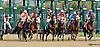 Cherokee'smoonbeam winning The Margaret MacLennan Memorial race at Delaware Park on 9/24/14