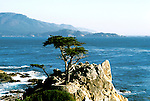 California: Monterey.  The Lone Cypress at Pebble Beach.  Photo camont103.  Photo copyright Lee Foster, 510/549-2202, lee@fostertravel.com, www.fostertravel.com