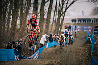 CAMPS Jelle (BEL/Pauwels sauzen - Vastgoedservice) getting seriously airborne coming down the dirt jump section<br /> <br /> GP Sven Nys (BEL) 2019<br /> U23 Men's Race<br /> DVV Trofee<br /> ©kramon