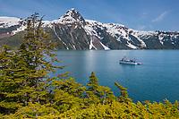 M/V Discovery, Western hemlock trees and the Chugach Mountans, Barry Arm, Prince William Sound, Alaska.