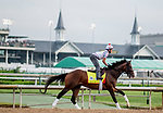 LOUISVILLE, KENTUCKY - MAY 02: War of Will, trained by Mark Casse, exercises in preparation for the Kentucky Derby at Churchill Downs in Louisville, Kentucky on May 2, 2019. Scott Serio/Eclipse Sportswire/CSM