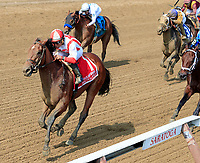 Practical Joke (no. 1) wins the Grade 1 Allen Jerkens Stakes for  three year olds August 26 at Saratoga Race Course, Saratoga Springs, NY.  The winner, ridden by Joel Rosario and trained by Chad Brown, won by  1 1/4 lengths in the seven furlong race on the dirt against eight opponents.  (Bruce Dudek/Eclipse Sportswire)