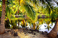 Palm trees reflecting on fish pond at Puu Honua O Honaunau National Historic Park (City of Refuge) on the Kona Coast of Hawaii.