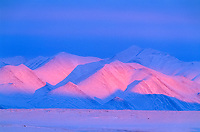 Pink alpenglow sunset on the snow covered Philip Smith Mountains of the Brooks Range, Arctic, Alaska