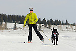 A young woman goes ski joring with her dog in Jackson Hole, Wyoming.