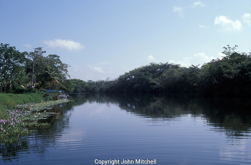 Early morning on the New River, Orange Walk, Belize