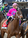 January 25, 2020: #1 Zulu Alpha with jockey Tyler Gaffalione  in the post parade before winning the Pegasus World Cup Turf Invitational GI during the Pegasus World Cup Invitational at Gulfstream Park Race Track in Hallandale Beach, Florida. Liz Lamont/Eclipse Sportswire/CSM