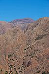 Remontée  des gorges sauvages de Tagdichte jusqu'au col deTikki (1300 m)..Tagdichte canyons in anti atlas mountain near tafraoute