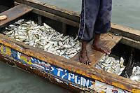 SIERRA LEONE fishing harbour Tombo, food security and the livelyhood of small fishermen are affected by international big trawler fleet / SIERRA LEONE Fischerhafen Tombo, die Ernaehrungssicherung der Kuestenbewohner und die Existenz von Kuestenfischern ist durch Ueberfischung grosser Trawler Flotten bedroht
