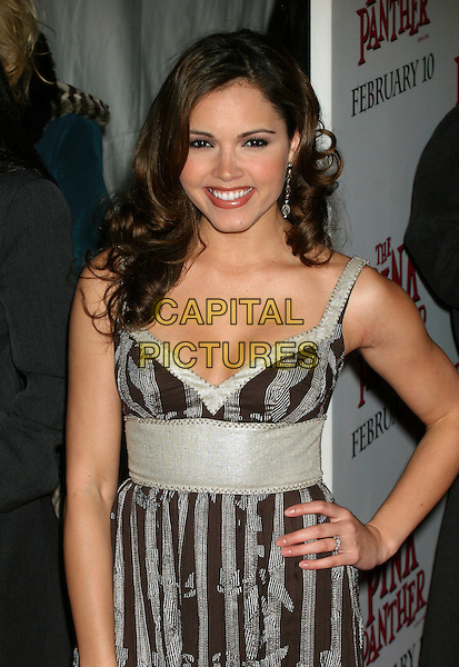 "SUSIE CASTILLO.""The Pink Panther"" US film premiere at the Ziegfeld Theater, New York, NY, USA..February 6th, 2006.Ref: IW.half length brown grey gray striped stripes dress hand on hip.www.capitalpictures.com.sales@capitalpictures.com.©Capital Pictures"
