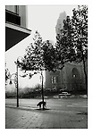 A dog urinates against a tree on the Tauentzienstraße, West Berlin. In the morning mist behind stands the broken spire of the the Kaiser Wilhelm church destroyed by bombs in 1943. 17-20 November 1989. Photograph copyright Graham Harrison.