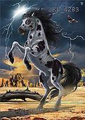 Interlitho, Lorenzo, REALISTIC ANIMALS, paintings, thunder stallion(KL4283,#A#) realistische Tiere, realista, illustrations, pinturas ,puzzles