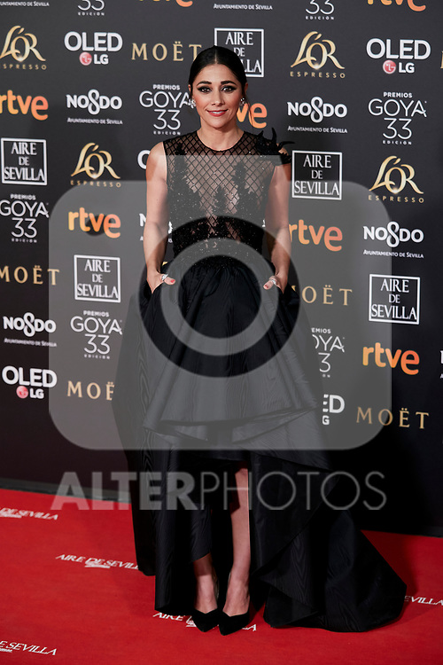Mariam Hernandez attends to 33rd Goya Awards at Fibes - Conference and Exhibition  in Seville, Spain. February 02, 2019. (ALTERPHOTOS/A. Perez Meca)