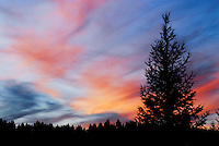 """NIGHT FALL""<br />