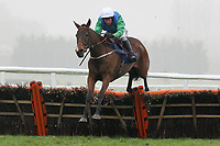 Keltic Crisis ridden by Mark Grant jumps during the Berry Bros & Rudd National Hunt Novices Hurdle - Horse Racing at Newbury Racecourse, Berkshire