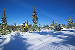 Snow Shoeing at Lolo Pass on the Montana - idaho border