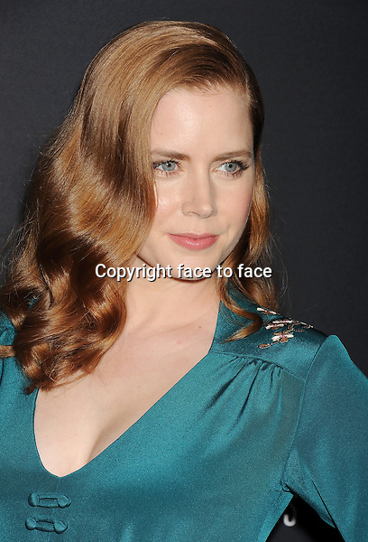 BEVERLY HILLS, CA- FEBRUARY 22: Actress Amy Adams arrives at the 16th Costume Designers Guild Awards at The Beverly Hilton Hotel on February 22, 2014 in Beverly Hills, California.<br />