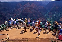 Tourists at Waimea Canyon lookout, Island of Kauai
