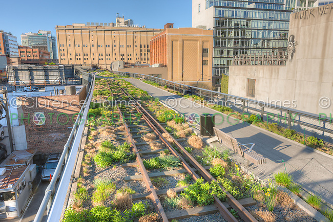 A view of the landscaping in High Line Park planted along the old railroad tracks left in place.  The High Line is an urban aerial greenway reclaimed from the abandoned elevated West Side Line.
