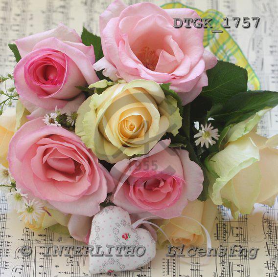 Gisela, FLOWERS, photos, DTGK1757,#f# Blumen, flores, retrato