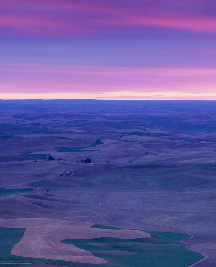 A pinkish and light purple sunrise as seen from Steptoe Butte in the Palouse farmland of Eastern Washington State.