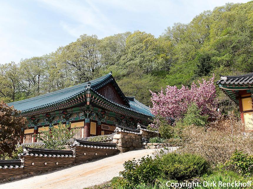 Buddhistischer Tempel Sinheungsa im Nationalpark Seoraksan bei Sokcho, Provinz Gangwon, S&uuml;dkorea, Asien, UNESCO-Biosph&auml;renreservat<br /> buddhistic temple Sinheungsa in , Seoraksan National Park near Sokcho, province Gangwon, South Korea, Asia, UNESCO Biosphere reserve