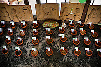 An array of seeds and herbs are displayed with labels in the common dining hall on Dr. Vandana Shiva's farm in Dehradun, Uttarakhand, India. ..Dr. Vandana Shiva is a physicist turned environmentalist who campaigns against genetically modified food and teaches farmers to rely on indigenous farming methods.. .Photo by Suzanne Lee / For The National