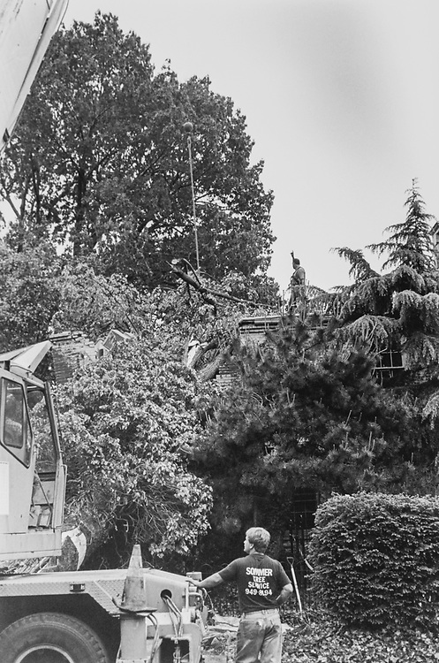 Neighborhood tree being removed from home after storm backward through area, in 1993. (Photo by Duncan Spencer/CQ Roll Call via Getty Images)