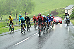 The 14 man breakaway group including Tom Dumoulin (NED) Team Sunweb during Stage 2 of the Criterium du Dauphine 2019, running 180km from Mauriac to Craponne-sur-Arzon, France. 9th June 2019<br /> Picture: ASO/Alex Broadway | Cyclefile<br /> All photos usage must carry mandatory copyright credit (© Cyclefile | ASO/Alex Broadway)