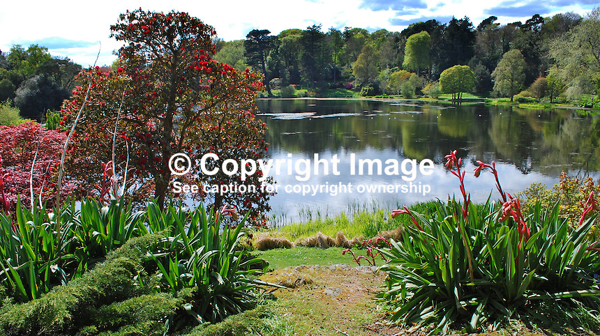 Lake, lakeside, springtime, May, 2012, Mount Stewart, National Trust, Newtownards, N Ireland, UK, 201205055811..© Victor Patterson, 54 Dorchester Park, Belfast, N Ireland. Tel: +44 2890661296; Mobile: +44 7802 353836; Emails: victorpatterson@me.com & victorpatterson@gmail.com; www.victorpatterson.com