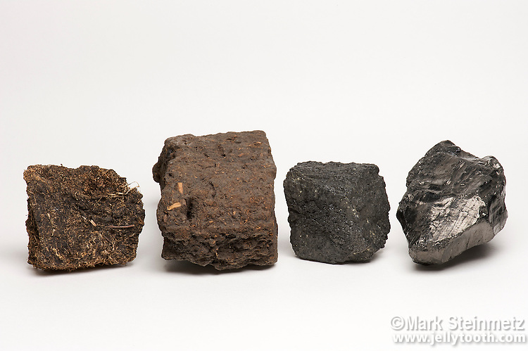 Four types of coal, arranged in order of the process of coal formation, or coalification--plant remains that have been compacted, hardened, chemically altered, and metamorphosed over geologic time. From left to right: bog peat (Ireland), lignite coal, bituminous coal, and anthracite coal. Anthracite is the ultimate stage of maturation, producing a hard, dense, shiny, rock that is the cleanest-burning, highest rank of coal. It makes up under 1% of known coal reserves.