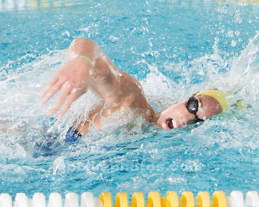 1/16/2010 Michigan vs. Northwestern women's swimming and diving.