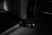 Wroclaw 31.08.2006 Poland<br /> The worst and the most dangerous district in Wroclaw ( Poland ) , called by people &quot;The Bermuda Triangle&quot;. There are walls bearing an inscription &quot;Who will enter here, will not exit alive&quot; Many families there are pathological and live in extreme poverty. Children have no place for any games so they loaf around on this wasted district and disseminate a juvenile delinquency. Many of them become sexually active though they are only 10-12 years old<br /> (Photo by Adam Lach / Napo Images)<br /> <br /> Najbardziej nabezpieczna dzielnica we Wroclawiu zwana przez ludzi Trojkatem Bermudzkim. Sa tam sciany opatrzone napisem &quot; Kto tu wejdzie, nigdy nie wyjdzie stad zywy&quot; Mieszka tam wiele rodzin patologicznych i zyja w wielkiej nedzy. Dzieci wlocza sie po ulicach nie majac miejsc na zabawe i szerza przestepczosc wsrod nieletnich. Wiele z dzieci uprawia seks choc maja zaledwie 10-12 lat<br /> (Fot Adam Lach / Napo Images)