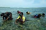 """Südasien Asien Indien IND Tamil Nadu Golf von Mannar .Frauen des Fischerdorf Valasai tauchen nach Seealgen als zusätzliche Einkommensquelle , nach Tsunami konnten sie nicht arbeiten , die Region im Golf von Mannar ein maritimes Biosphärenreservat und Ecosystem mit Korallenriffen und Fischarten Meerestiere Tierarten ist durch das Sethusamudram Kanal Projekt für den Schiffsverkehr zwischen Indien und Sri Lanka bedroht  - Umwelt Natur Wirtschaft Aquakultur Fischerei Fischer Taucher tauchen Meer Meerwasser Alge Algen Seealge Frau Arbeit arbeiten Einkommen arm arme Menschen Armut Unterwasser Meerenge Ecosystem Koralle Korallen Riff Großprojekt Großprojekte Kanalbau xagndaz   .South Asia India Tamil Nadu Gulf of Mannar .women of fishermen village Valasai dive for sea algae sea weed for income generation , they were affected by Tsunami , the region is also affected by the Sethusamudram canal Project for shipping between India and Sri Lanka  -  environment nature marine national park ecosystem coral corals economy fisheries aquaculture woman labour work diving sea ocean diver poor poverty .  [ copyright (c) Joerg Boethling / agenda , Veroeffentlichung nur gegen Honorar und Belegexemplar an / publication only with royalties and copy to:  agenda PG   Rothestr. 66   Germany D-22765 Hamburg   ph. ++49 40 391 907 14   e-mail: boethling@agenda-fototext.de   www.agenda-fototext.de   Bank: Hamburger Sparkasse  BLZ 200 505 50  Kto. 1281 120 178   IBAN: DE96 2005 0550 1281 1201 78   BIC: """"HASPDEHH"""" ,  WEITERE MOTIVE ZU DIESEM THEMA SIND VORHANDEN!! MORE PICTURES ON THIS SUBJECT AVAILABLE!! INDIA PHOTO ARCHIVE: http://www.visualindia.net ] [#0,26,121#]"""