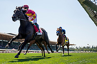 ARCADIA, CA - MAY 27: Avenge races in the Gamely Stkaes at Santa Anita Park  on May 27, 2017 in Arcadia, California. (Photo by Alex Evers/Eclipse Sportswire/Getty Images)