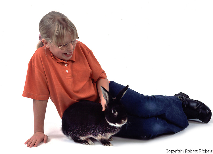Young Girl stroking Pet Rabbit, Tan & Black Colour, aged 10 years old, domestic, white background, cut out, studio,