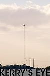 Ballyhorgan Wind Farm: Erectors putting up a mast in the Ballyhorgan Wind farm area on Wednesday evening,