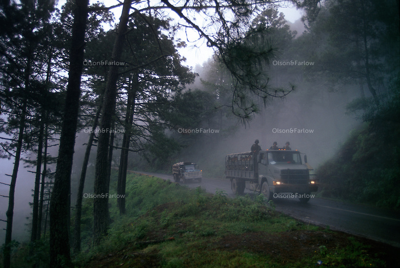 Military trucks full of soldiers emerge from mountain fog in the Sierra Madre Oriental along a scenic portion of the Pan American highway. The road winds through Los Marmoles National Park in Hidalgo state of Mexico. It is renown for its sheer marble cliffs and thick pine forest.