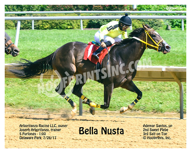 Bella Nusta winning at Delaware Park on 7/26/17