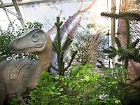 San Francisco Conservatory of Flowers Plantosaurus exhibit with Saxon Holt photo murals - aurecaria trees